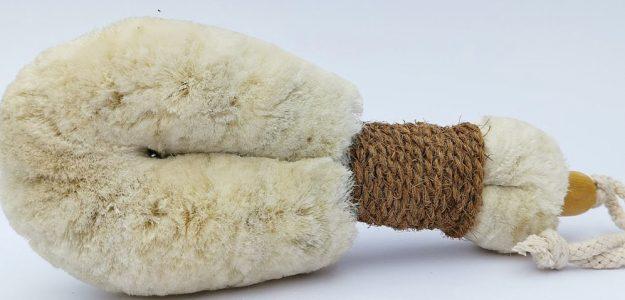 cropped 1.ELYTRUM rejuvenating dry body brush