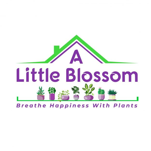 A Little Blossom