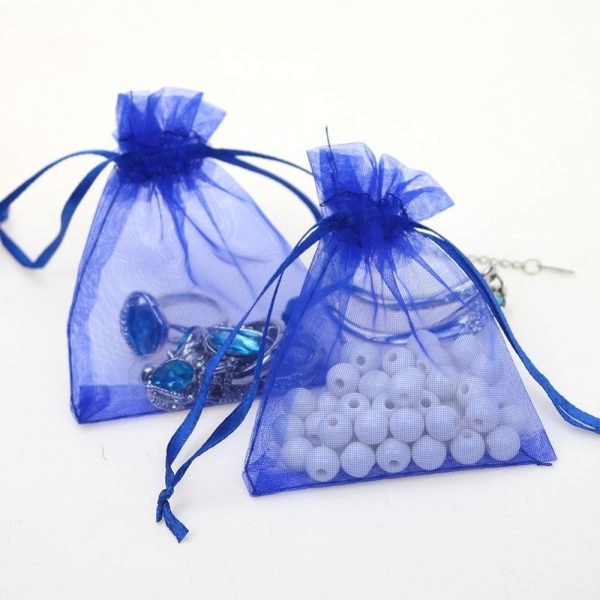 Blue Organza Pouch