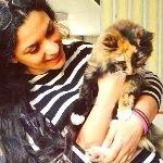 Love Cats Croydon - Cat Sitter
